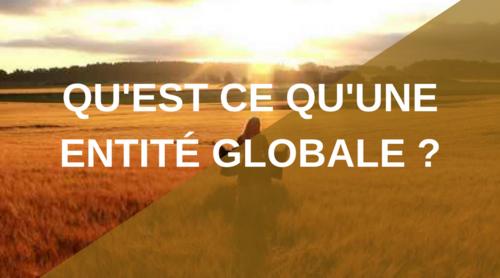 Qu'est-ce qu'une entité globale ?