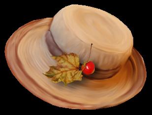 séparateur chapeau feuille automne