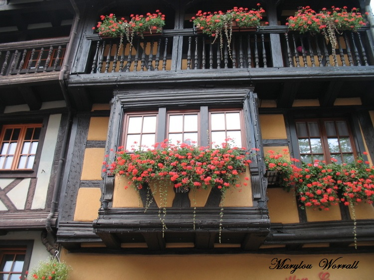Eguisheim (68) 7/ : Enseignes et Place de Gaulle