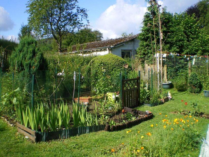 Mon jardin il y a dix ans!
