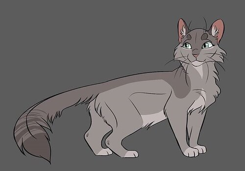 Aile de Colombe - Dovewing