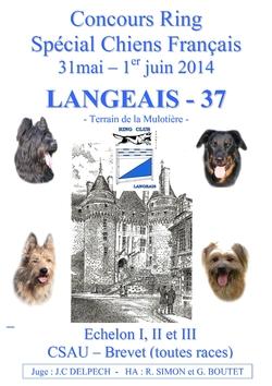 2014 - Langeais (37)