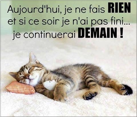 Chats ... Images - 7