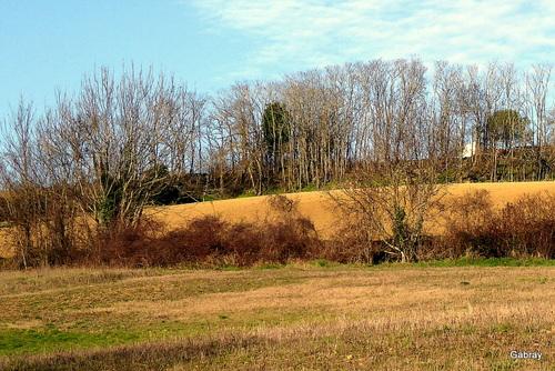 Randonnée: paysagesdes coteaux Tolosan