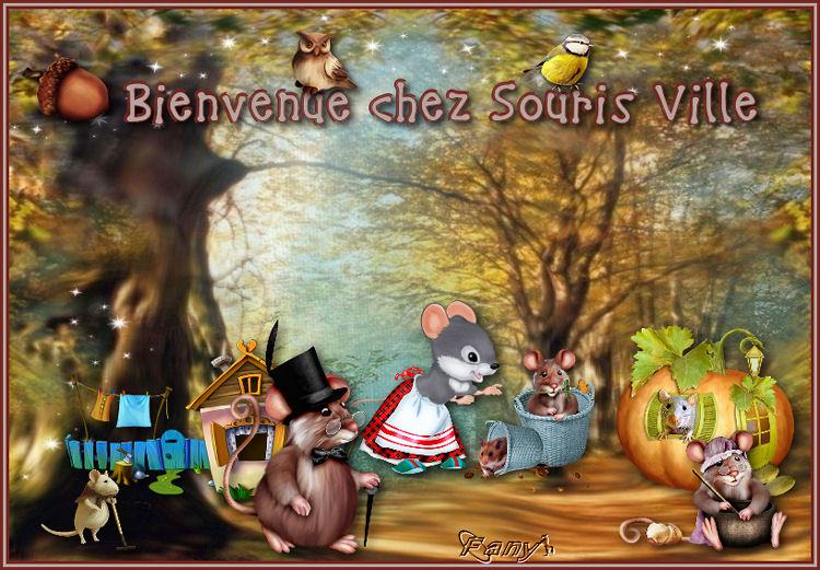 Bienvenue chez SourisVille - Page 3 1566839331-bienvenuechezsourisville