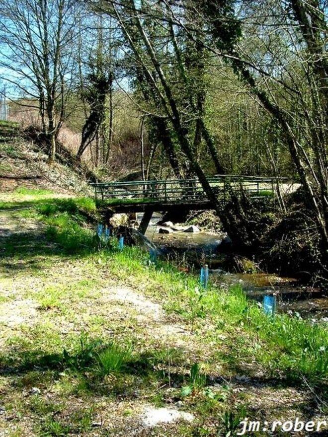 """Condat sur vienne: Mon coup de Gueule pour ce petit ruisseau """" le Rigouroux """""""