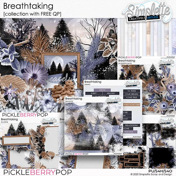 14 janvier : Breathtaking Simpl610