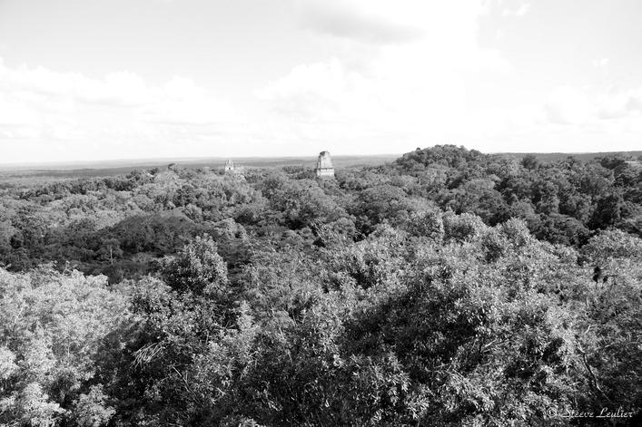 Tikal en N&B