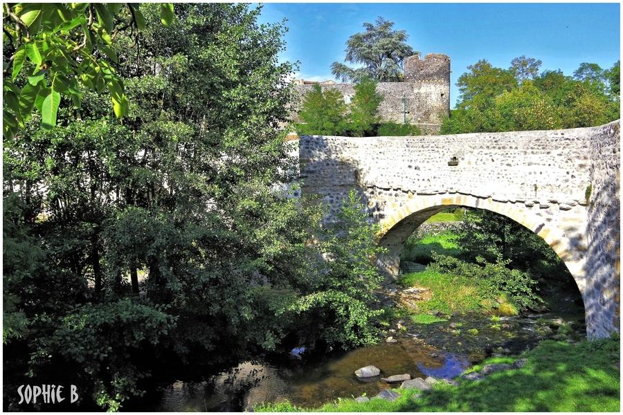 Un pont gothique .
