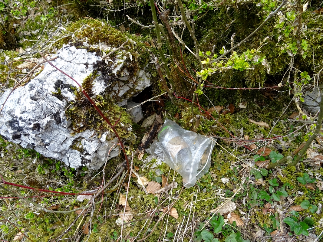 Le geocaching