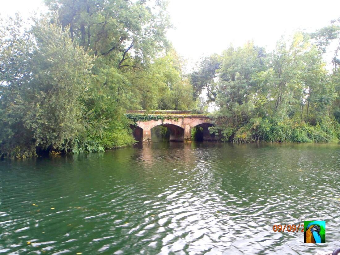 SAINT  SIMON : Balade en gabarre sur la Charente 2/2