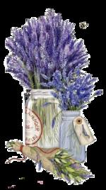 Parfum de lavande   de Evalynda