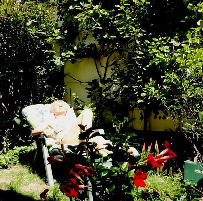 De mon jardin