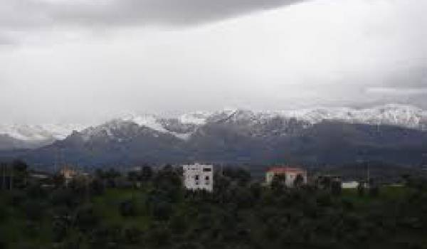 Saïd Belounès est né à Aït Imghour en Haute Kabylie.