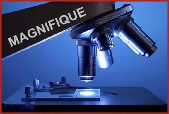 Vu au Microscope.