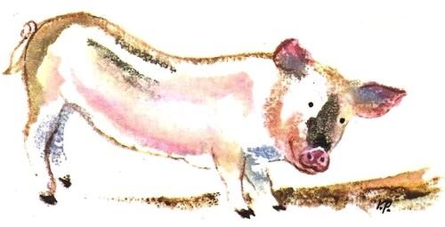 LES SOUVENIRS DE PIG, LE PETIT COCHON (Pierre Mac Orlan)