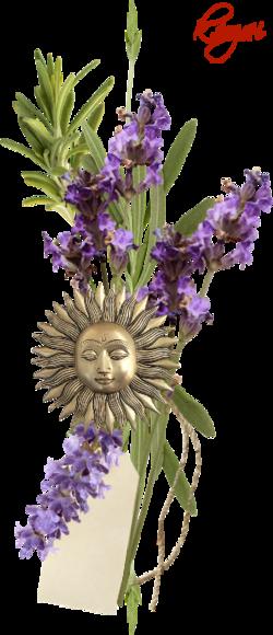 Saját png virágok