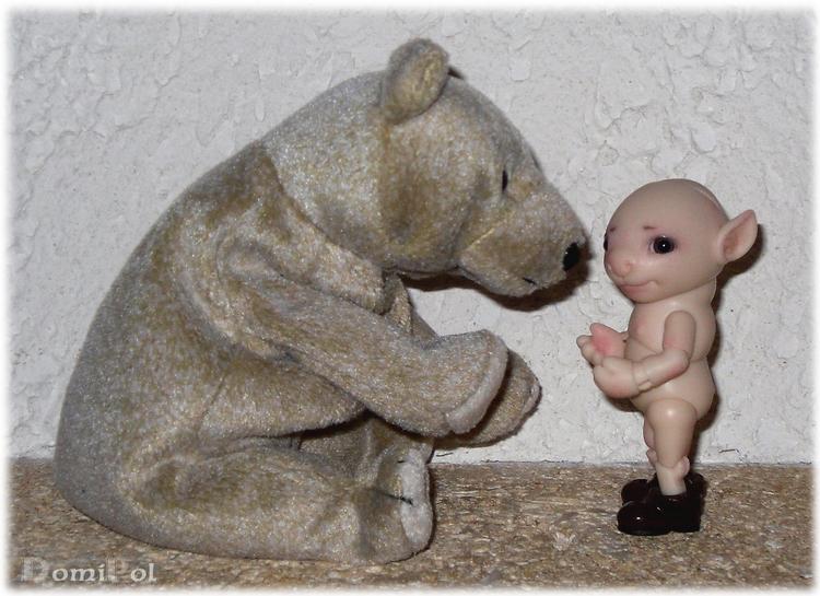 Les petits ours divers achetés