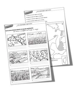 Les paysages de campagnes et les activités agricoles