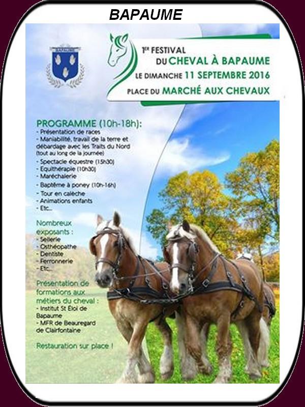 Brocantes, ducasses, festival du cheval, foire et déjantée c'est ce week-end à ARRAS et ses environs