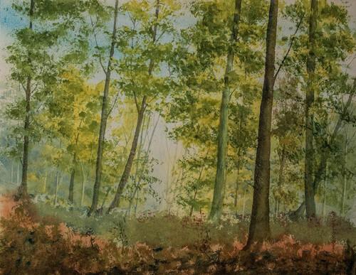 Deux aquarelles en forêt...