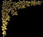 Coins Dorés 6