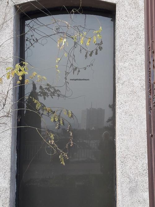 Reflets  de févier - 2