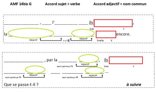 AMF 14G et AMF 14bisG L'accord adjectif > nom commun, l'accord sujet > verbe