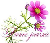 Cartonnettes - Bonne Fête Mamie !