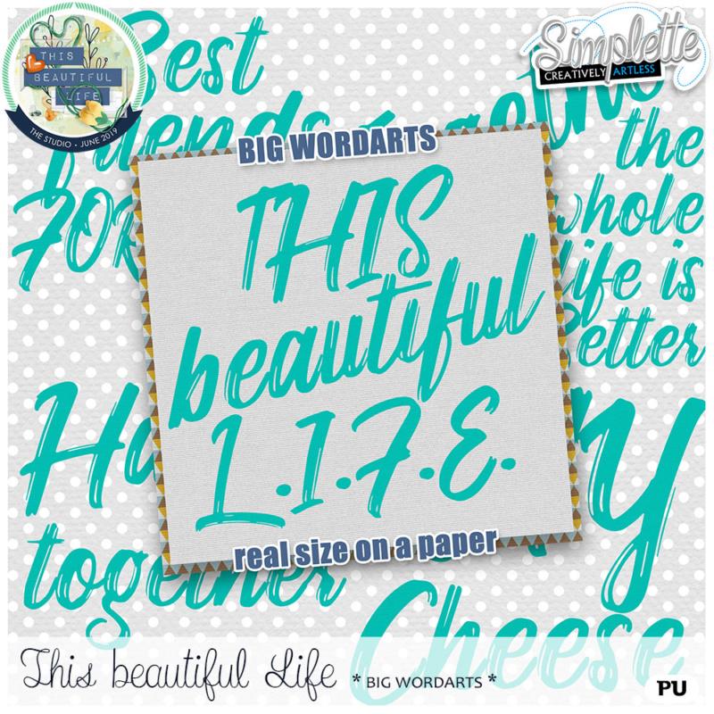 10 juin :  This beautiful Life Simpl355