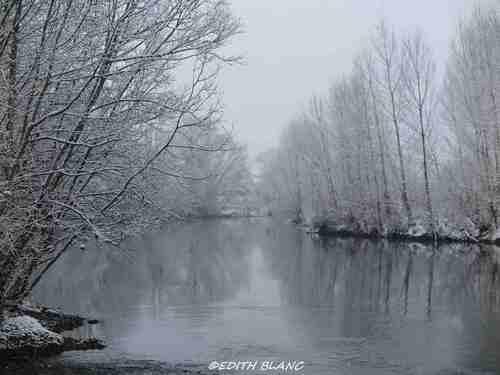 photo du tarn et des arbres sous la neige