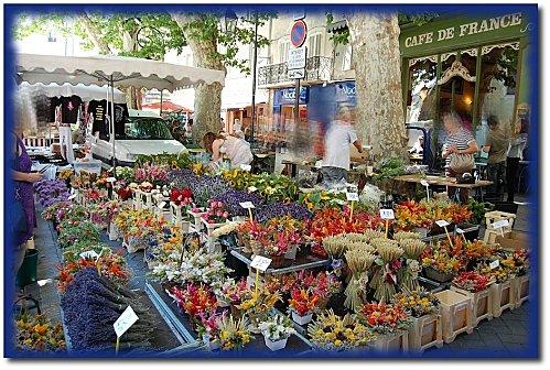 marche-fleurs-7.JPG