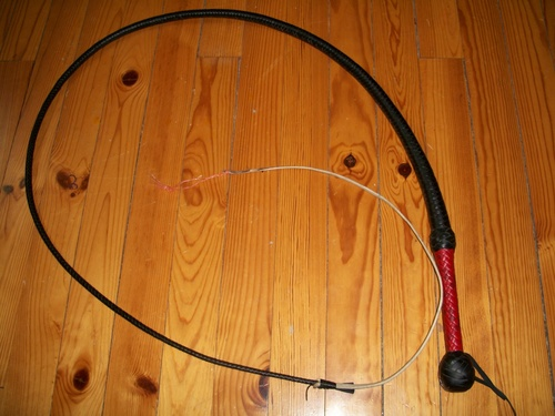 young indy bullwhip