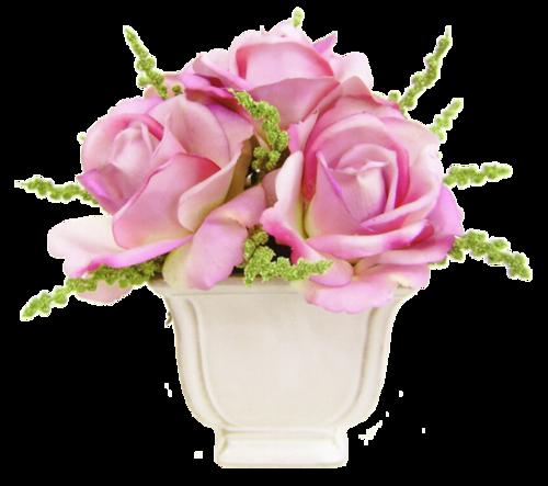 Des Roses pour Vous...!