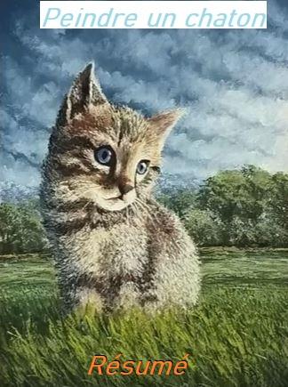 Dessin et peinture - vidéo 2970 : Comment peindre un chaton ( résumé 5/5 ) ? - acrylique et huile.