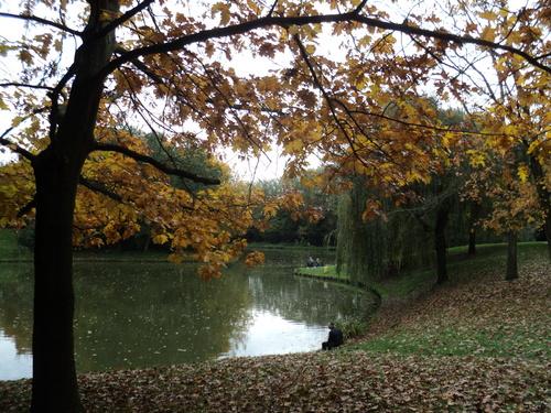* Wattrelos - Le Parc du Lion