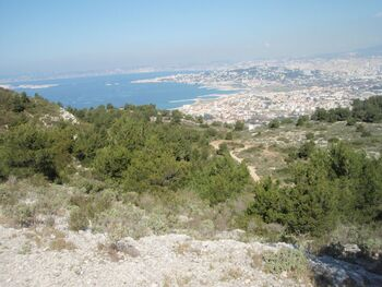 Marseille se dévoile