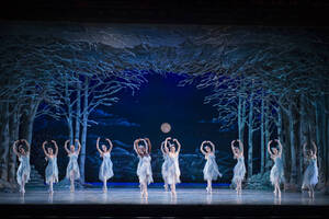 dance ballet theatre scenes of ballet