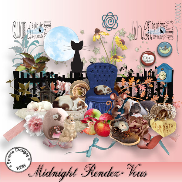 "Quickpage ""Midnight rendez-vous"""