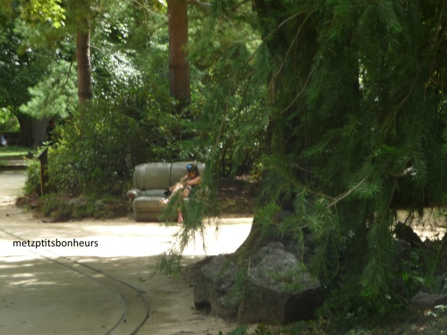 Jardin Botanique et....
