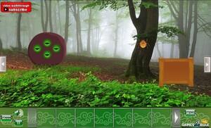 Jouer à Foliage forest escape