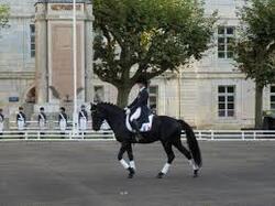 Centre equestre de Montenois
