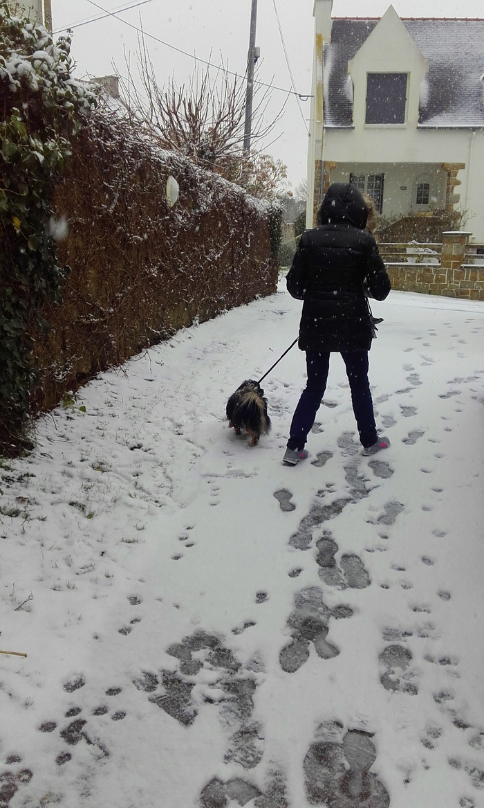 neigeux  (la promeneuse)