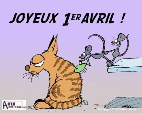 """Résultat de recherche d'images pour """"les souris qui votent pour des chats"""""""