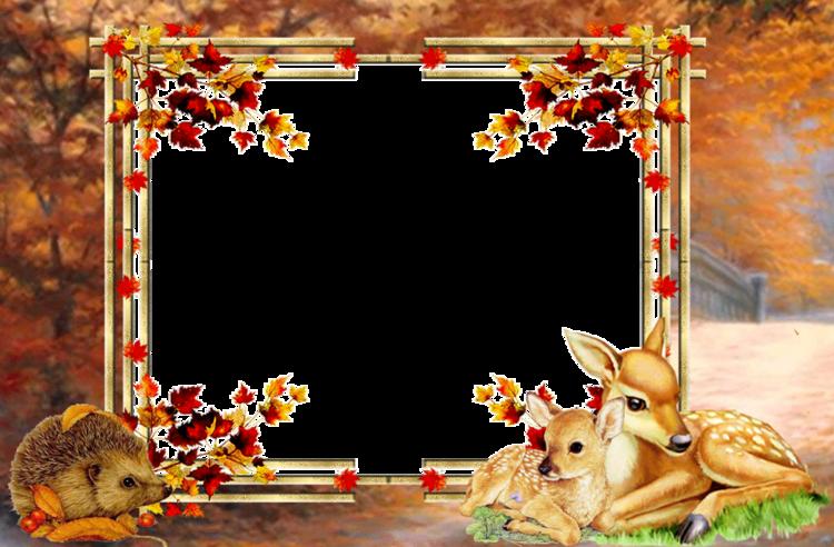 Cadres l'automne