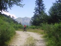 Junior VTT : Bòrdes de Sauvaga (col du Portillon) - 31/Val d'Aran