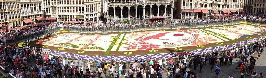 Nadine et le tapis de fleur de Bruxelles