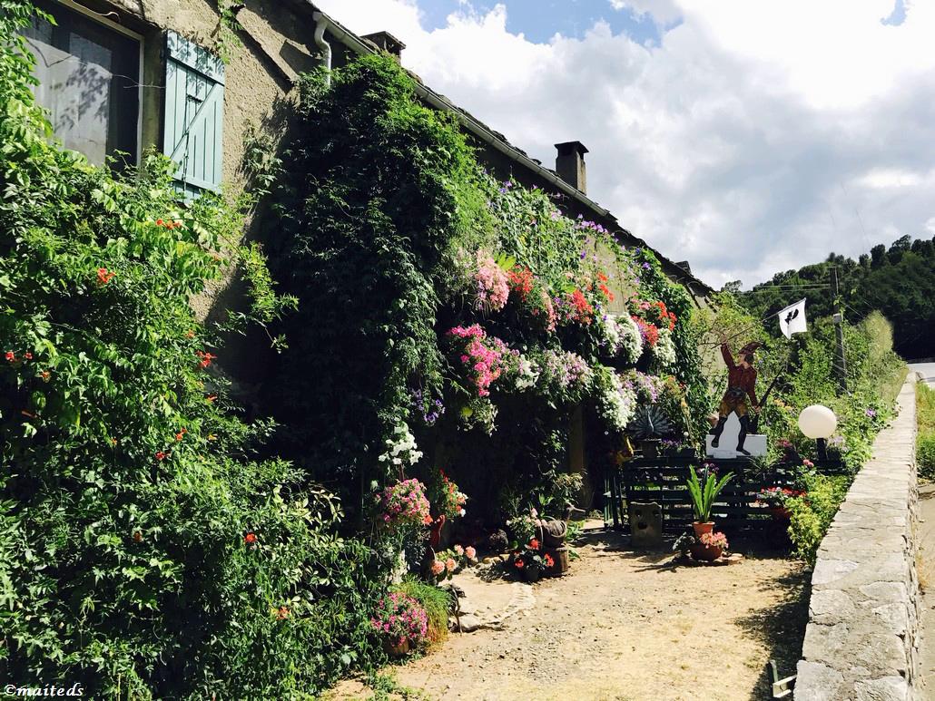 Maison corse tout en fleurs
