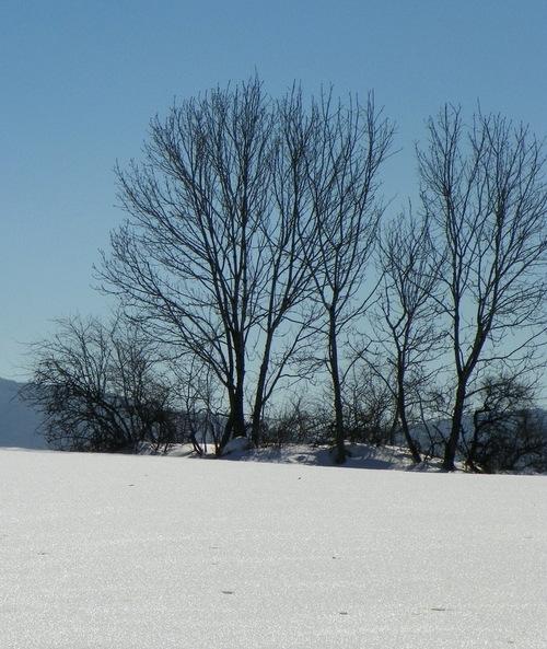 Instants d'hiver