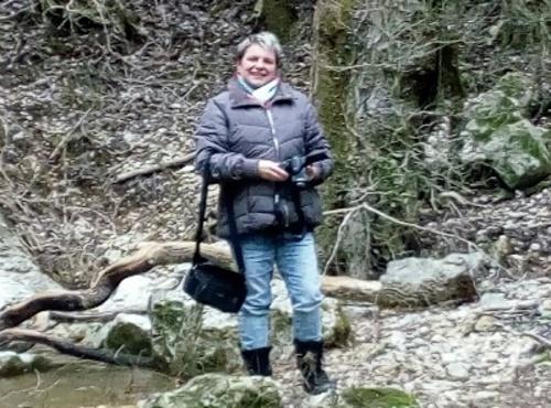 La cascade du ruisseau du Pointay